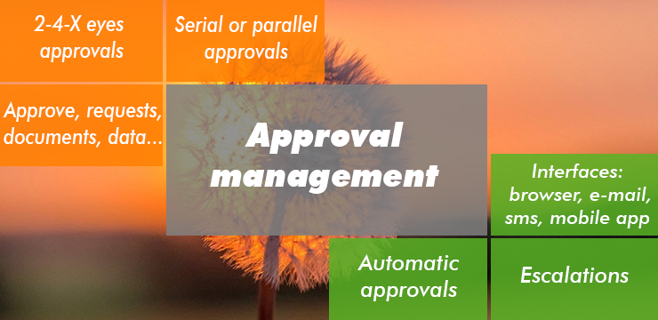 APPROVAL MANAGEMENT SOFTWARE